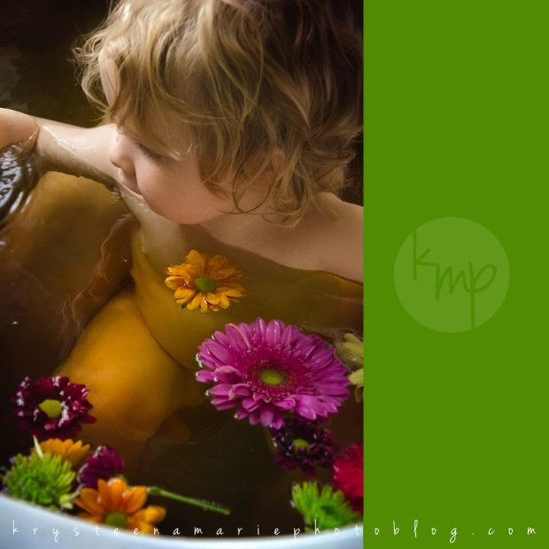 Krysteena Marie Photography | Newborn session, herbal bath with big sister and flowers
